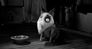 What Wendy Wore: In Stitches After Frankenweenie