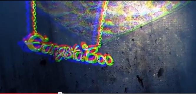 booshot1