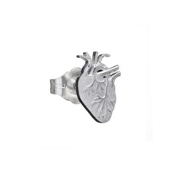 anatomicalheart_50__43896_std