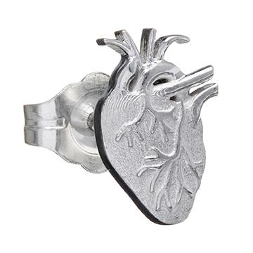 anatomicalheart_Z__07476_std