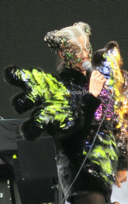 "Bjork's thinking, ""I wear all these disguises bu these two women keep finding me!"""
