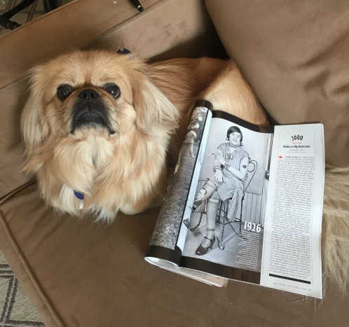 I didn't want to poach the photo from New York's website and I couldn't find an embeddable version on Getty, so here's Edward the dog posing with the magazine. Click this photo and scroll down to view the original.